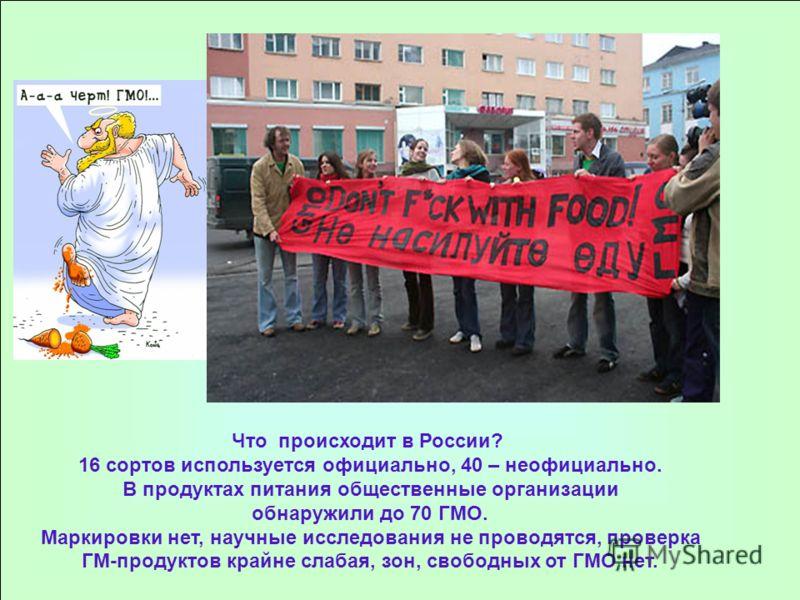 Что происходит в России? 16 сортов используется официально, 40 – неофициально. В продуктах питания общественные организации обнаружили до 70 ГМО. Маркировки нет, научные исследования не проводятся, проверка ГМ-продуктов крайне слабая, зон, свободных
