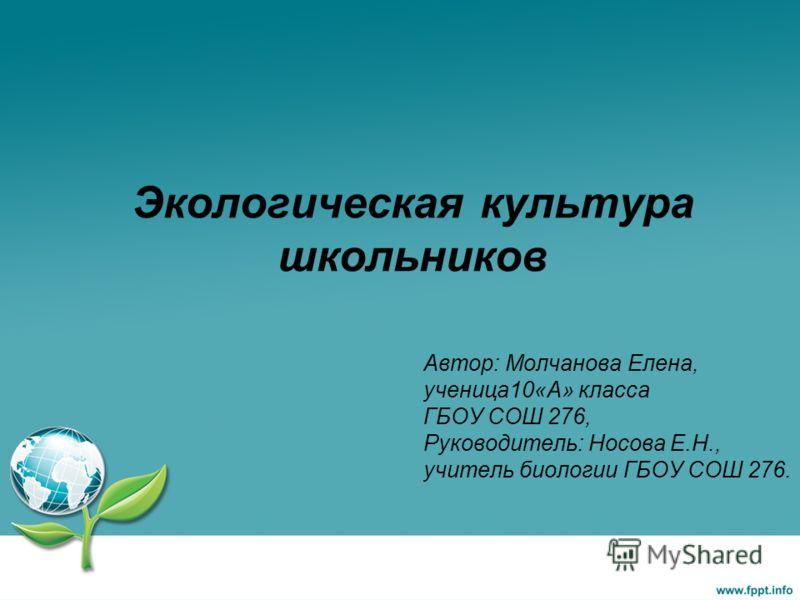 экологическая культура и здоровый образ жизни программа