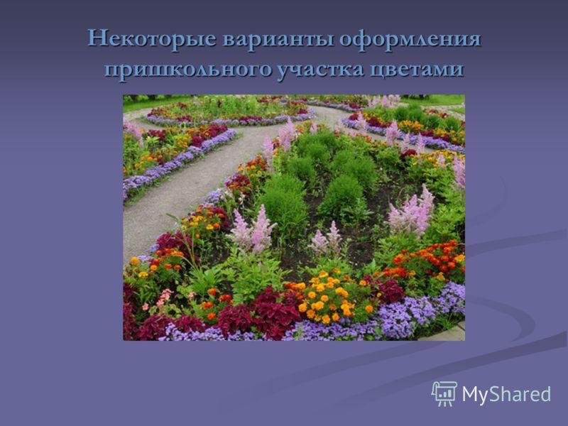 Некоторые варианты оформления пришкольного участка цветами
