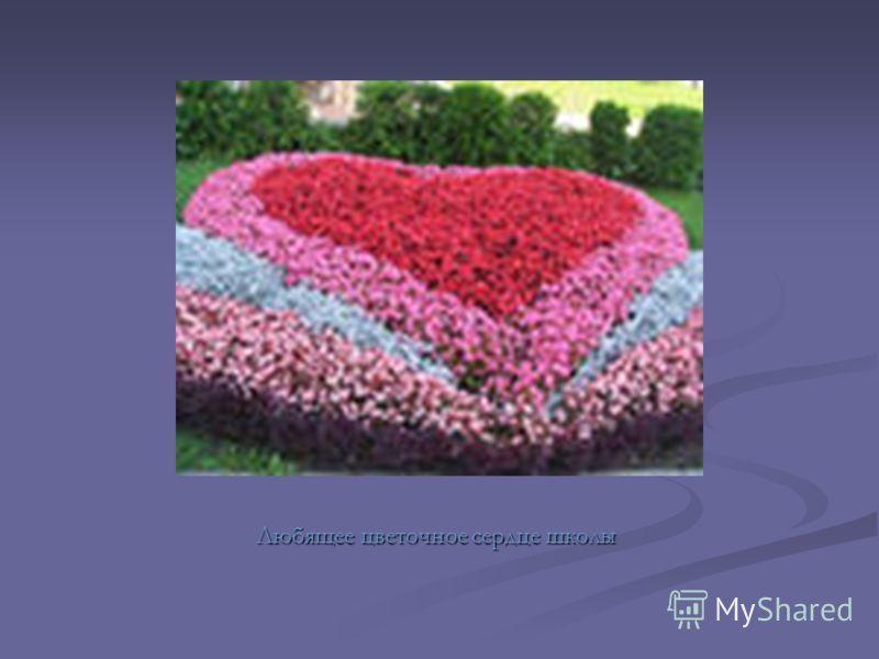 Любящее цветочное сердце школы