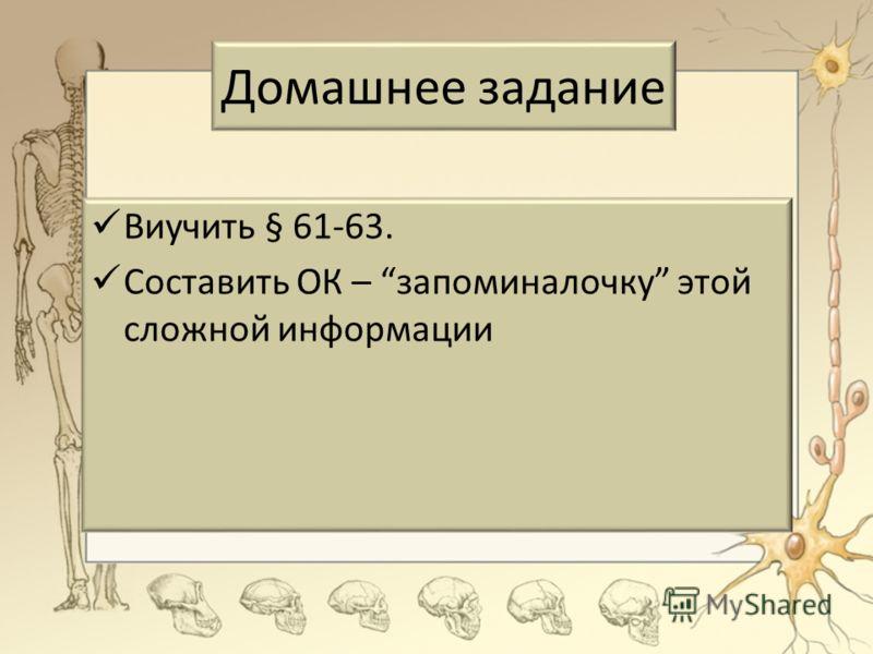 Домашнее задание Виучить § 61-63. Составить ОК – запоминалочку этой сложной информации