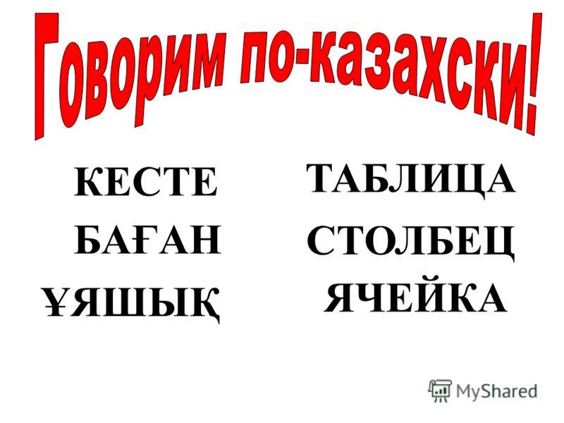 КЕСТЕ БАҒАН ҰЯШЫҚ ТАБЛИЦА СТОЛБЕЦ ЯЧЕЙКА