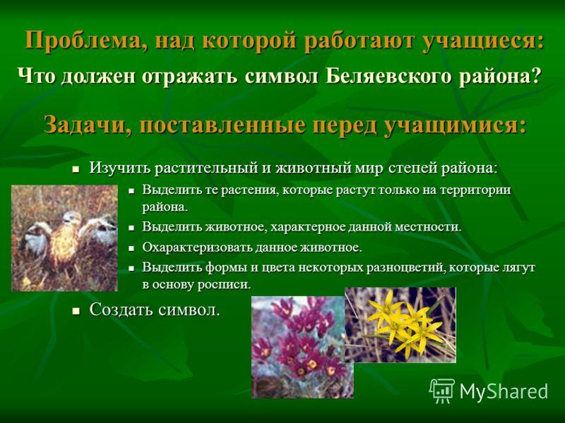 Проблема, над которой работают учащиеся: Задачи, поставленные перед учащимися: Изучить растительный и животный мир степей района: Изучить растительный и животный мир степей района: Выделить те растения, которые растут только на территории района. Выд