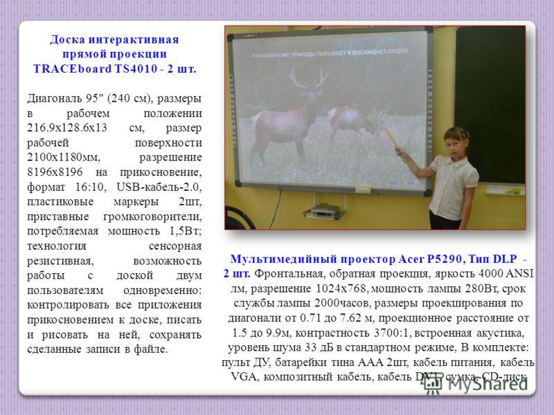 Доска интерактивная прямой проекции TRACEboard TS4010 - 2 шт. Диагональ 95