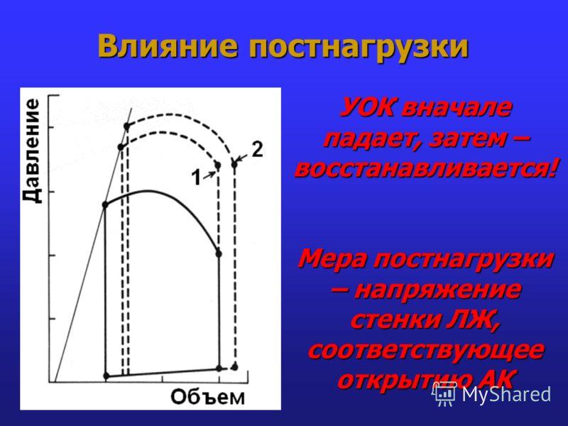 Влияние постнагрузки УОК вначале падает, затем – восстанавливается! Мера постнагрузки – напряжение стенки ЛЖ, соответствующее открытию АК