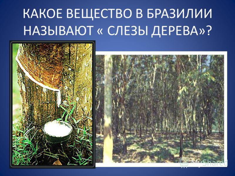 КАКОЕ ВЕЩЕСТВО В БРАЗИЛИИ НАЗЫВАЮТ « СЛЕЗЫ ДЕРЕВА»?