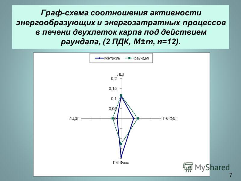 Граф - схема соотношения активности энергообразующих и энергозатратных процессов в печени двухлеток карпа под действием раундапа, (2 ПДК, M±m, n=12). 7