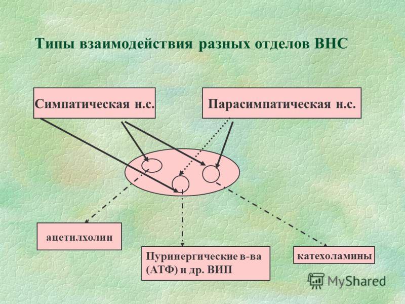 Типы взаимодействия разных отделов ВНС Симпатическая н.с.Парасимпатическая н.с. ацетилхолин катехоламины Пуринергические в-ва (АТФ) и др. ВИП