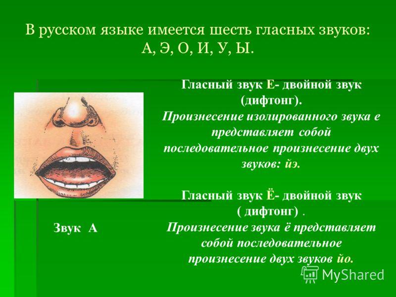 В русском языке имеется шесть гласных звуков: А, Э, О, И, У, Ы. Звук А Гласный звук Е- двойной звук (дифтонг). Произнесение изолированного звука е представляет собой последовательное произнесение двух звуков: йэ. Гласный звук Ё- двойной звук ( дифтон