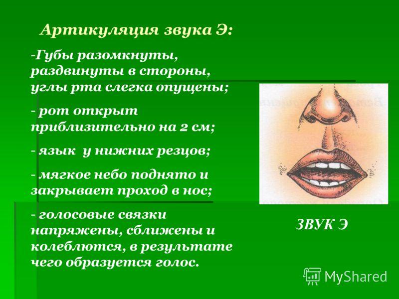 ЗВУК Э Артикуляция звука Э: -Губы разомкнуты, раздвинуты в стороны, углы рта слегка опущены; - рот открыт приблизительно на 2 см; - язык у нижних резцов; - мягкое небо поднято и закрывает проход в нос; - голосовые связки напряжены, сближены и колеблю