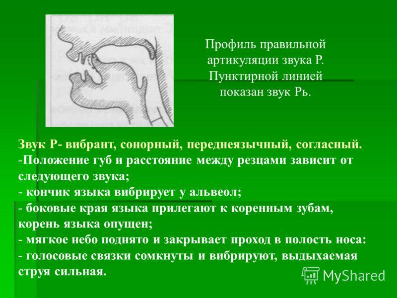 Профиль правильной артикуляции звука Р. Пунктирной линией показан звук Рь. Звук Р- вибрант, сонорный, переднеязычный, согласный. -Положение губ и расстояние между резцами зависит от следующего звука; - кончик языка вибрирует у альвеол; - боковые края