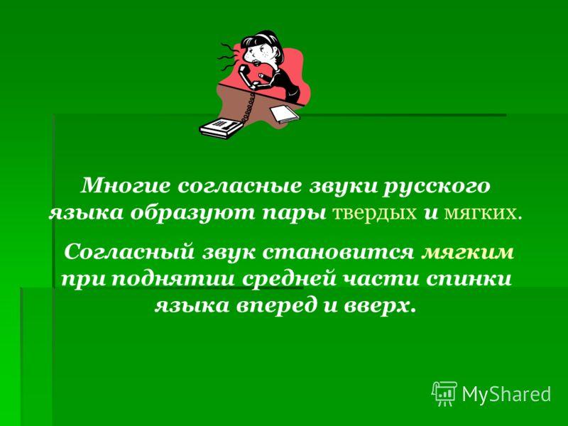 Многие согласные звуки русского языка образуют пары твердых и мягких. Согласный звук становится мягким при поднятии средней части спинки языка вперед и вверх.