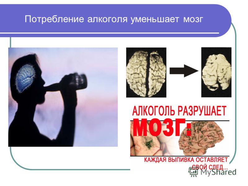 Потребление алкоголя уменьшает мозг