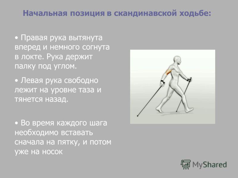 Начальная позиция в скандинавской ходьбе: Правая рука вытянута вперед и немного согнута в локте. Рука держит палку под углом. Левая рука свободно лежит на уровне таза и тянется назад. Во время каждого шага необходимо вставать сначала на пятку, и пото