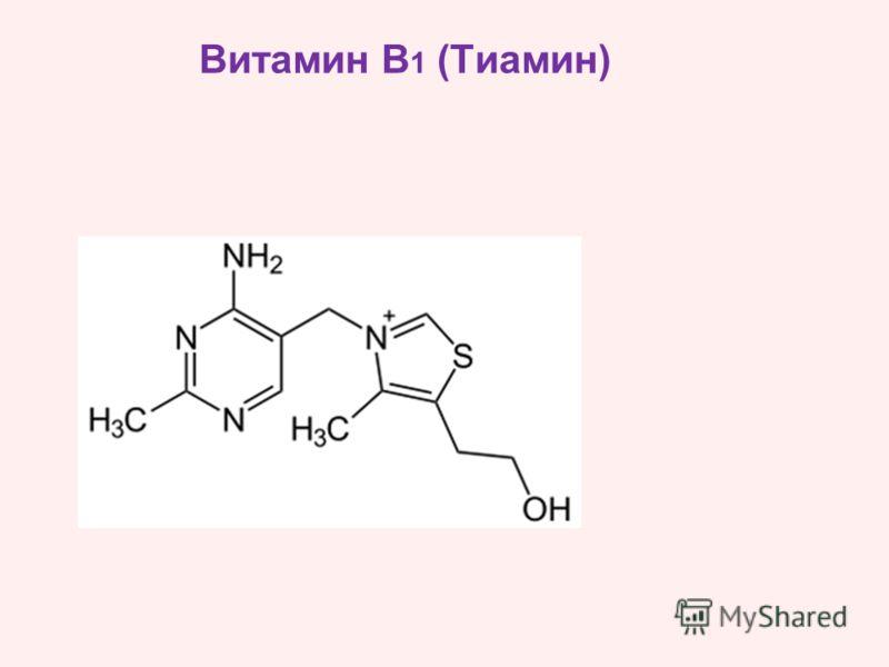 Витамин B 1 (Тиамин)