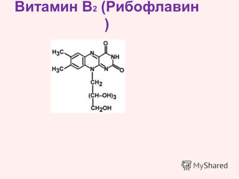 Витамин В 2 (Рибофлавин )