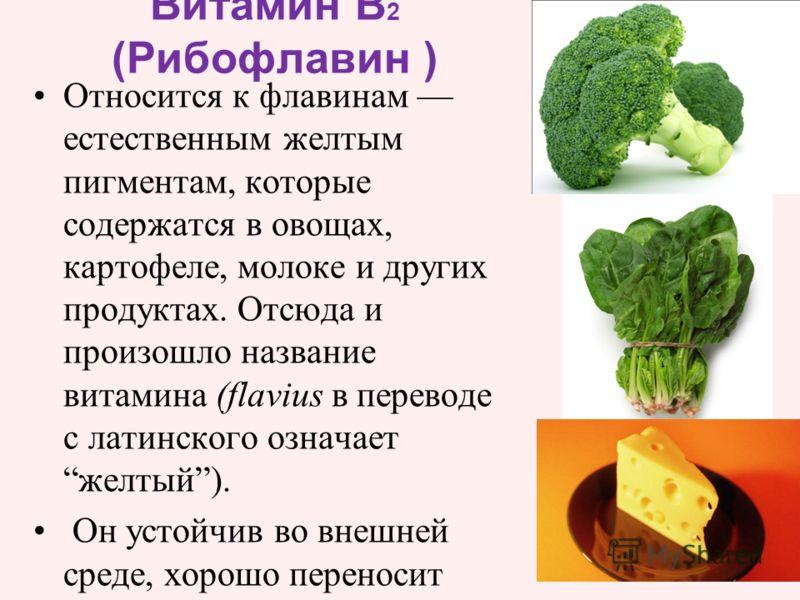 Относится к флавинам естественным желтым пигментам, которые содержатся в овощах, картофеле, молоке и других продуктах. Отсюда и произошло название витамина (flavius в переводе с латинского означает желтый). Он устойчив во внешней среде, хорошо перено
