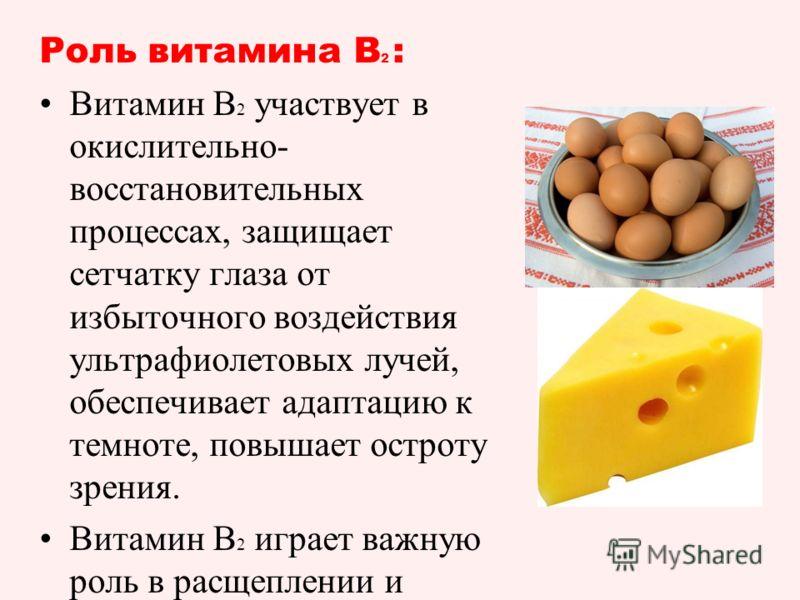 Роль витамина B 2 : Витамин В 2 участвует в окислительно- восстановительных процессах, защищает сетчатку глаза от избыточного воздействия ультрафиолетовых лучей, обеспечивает адаптацию к темноте, повышает остроту зрения. Витамин В 2 играет важную рол