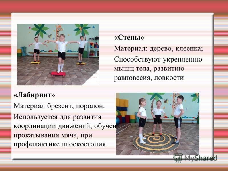 «Степы» Материал: дерево, клеенка; Способствуют укреплению мышц тела, развитию равновесия, ловкости «Лабиринт» Материал брезент, поролон. Используется для развития координации движений, обучение прокатывания мяча, при профилактике плоскостопия.