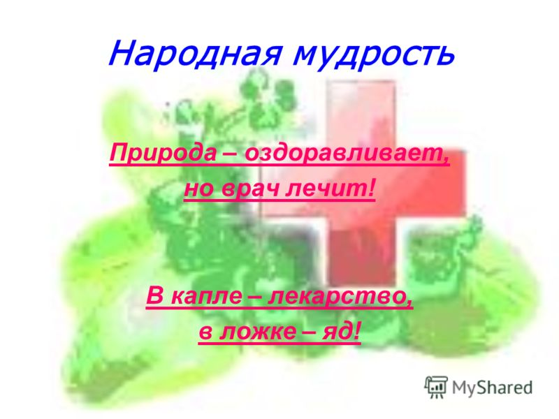 Народная мудрость Природа – оздоравливает, но врач лечит! В капле – лекарство, в ложке – яд!