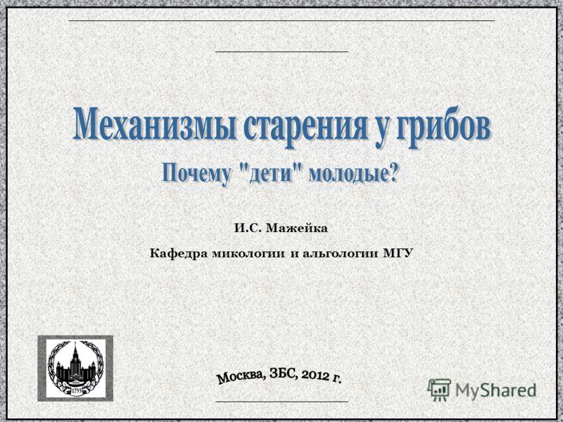 И.С. Мажейка Кафедра микологии и альгологии МГУ