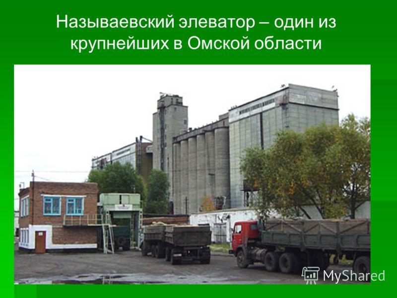 Называевский элеватор – один из крупнейших в Омской области