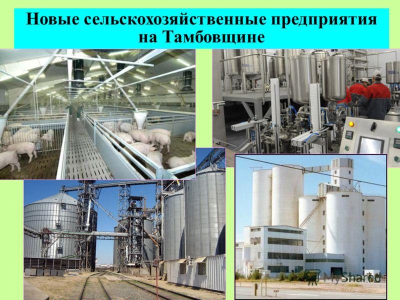 Новые сельскохозяйственные предприятия на Тамбовщине