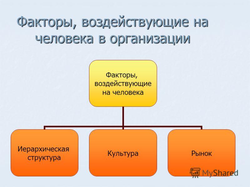 Факторы, воздействующие на человека в организации Факторы, воздействующие на человека Иерархическая структура КультураРынок