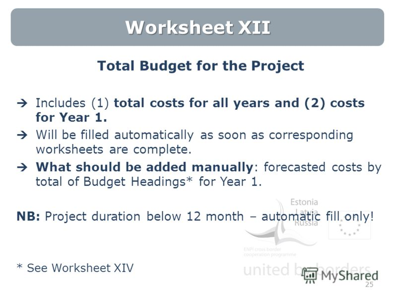 Worksheet XII Total Budget for the Project Includes (1) total costs for all years and (2) costs for Year 1. Will be filled automatically as soon as corresponding worksheets are complete. What should be added manually: forecasted costs by total of Bud