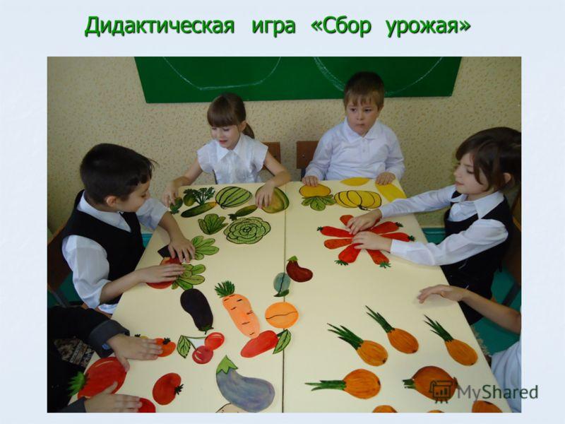 Дидактическая игра «Сбор урожая»