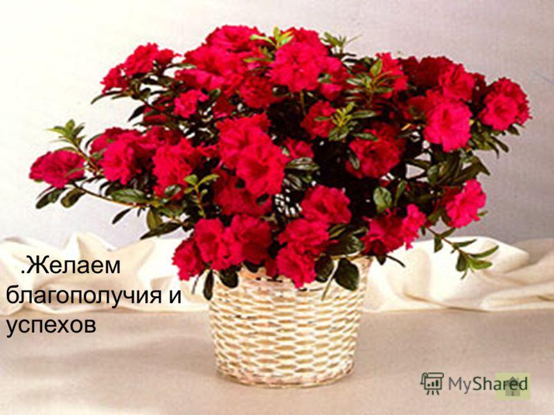 .Желаем благополучия и успехов