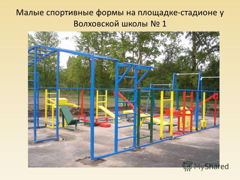 Малые спортивные формы на площадке-стадионе у Волховской школы 1