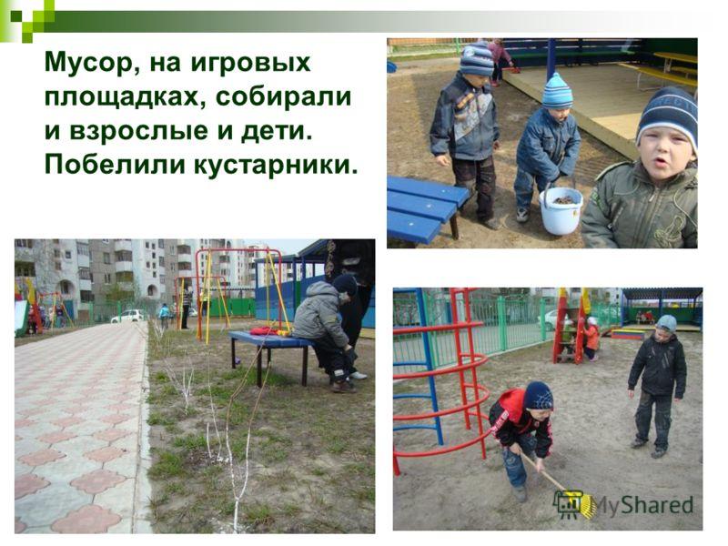 Мусор, на игровых площадках, собирали и взрослые и дети. Побелили кустарники.