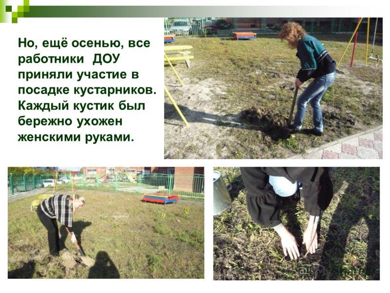 Но, ещё осенью, все работники ДОУ приняли участие в посадке кустарников. Каждый кустик был бережно ухожен женскими руками.