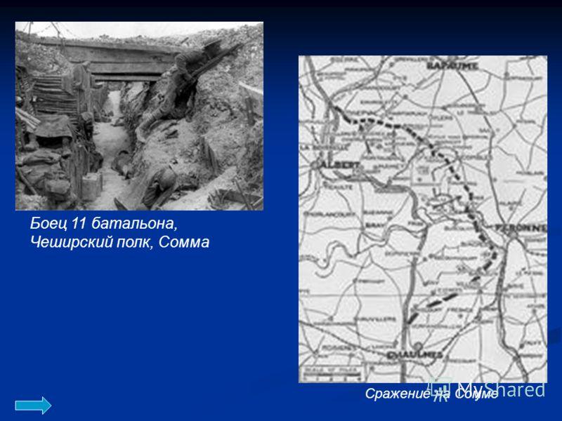 Боец 11 батальона, Чеширский полк, Сомма Сражение на Сомме