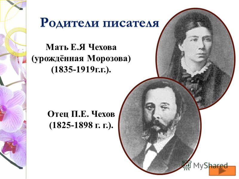 Родители писателя Мать Е.Я Чехова (урождённая Морозова) (1835-1919г.г.). Отец П.Е. Чехов (1825-1898 г. г.).