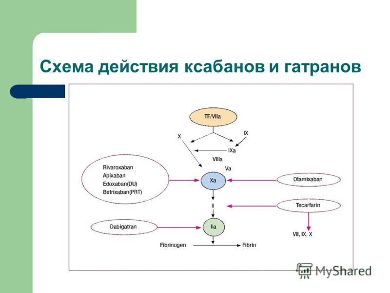 Схема действия ксабанов и гатранов