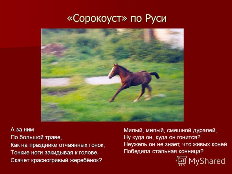 «Сорокоуст» по Руси А за ним По большой траве, Как на празднике отчаянных гонок, Тонкие ноги закидывая к голове, Скачет красногривый жеребёнок? Милый, милый, смешной дуралей, Ну куда он, куда он гонится? Неужель он не знает, что живых коней Победила