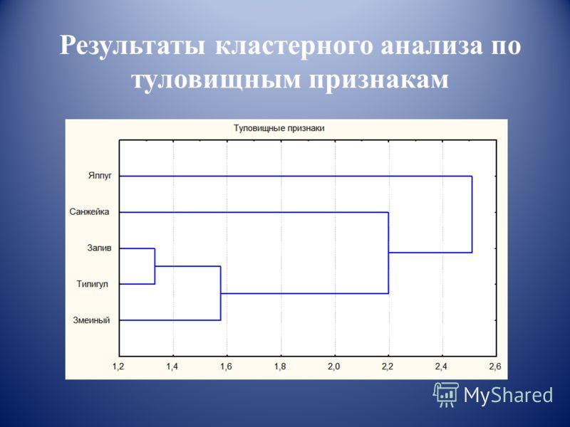 Результаты кластерного анализа по туловищным признакам