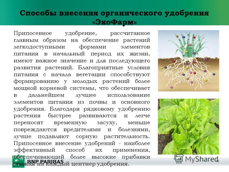 16 Способы внесения органического удобрения «ЭкоФарм» Припосевное удобрение, рассчитанное главным образом на обеспечение растений легкодоступными формами элементов питания в начальный период их жизни, имеют важное значение и для последующего развития