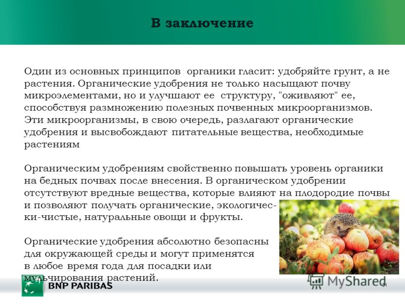 31 В заключение Один из основных принципов органики гласит: удобряйте грунт, а не растения. Органические удобрения не только насыщают почву микроэлементами, но и улучшают ее структуру,