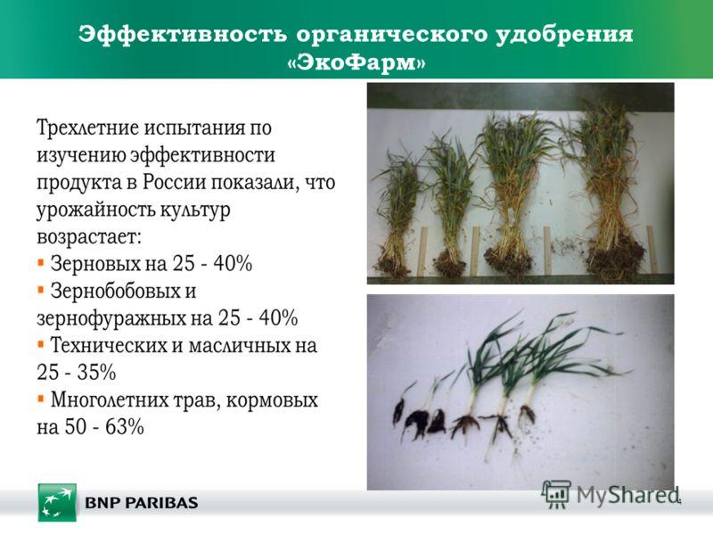 4 Эффективность органического удобрения «ЭкоФарм»