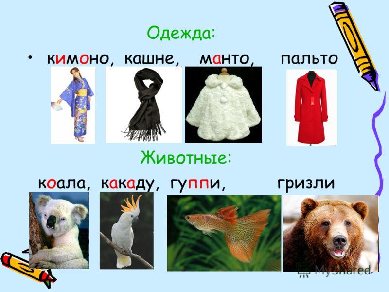 Одежда: кимоно, кашне, манто, пальто Животные: коала, какаду, гуппи, гризли