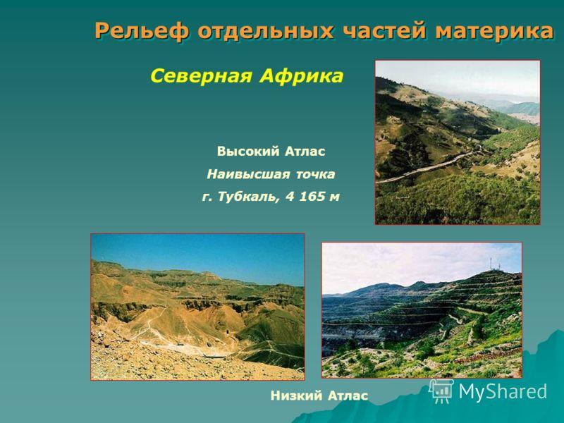 Рельеф отдельных частей материка Северная Африка Высокий Атлас Наивысшая точка г. Тубкаль, 4 165 м Низкий Атлас