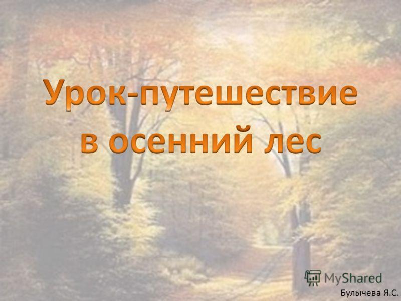 Булычева Я.С.