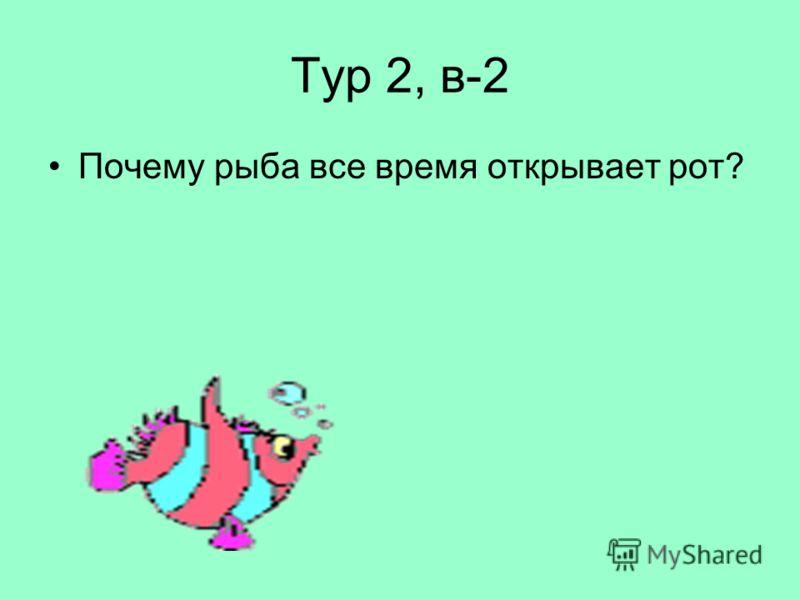 Тур 2, в-2 Почему рыба все время открывает рот?