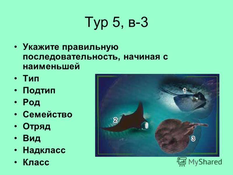 Тур 5, в-3 Укажите правильную последовательность, начиная с наименьшей Тип Подтип Род Семейство Отряд Вид Надкласс Класс