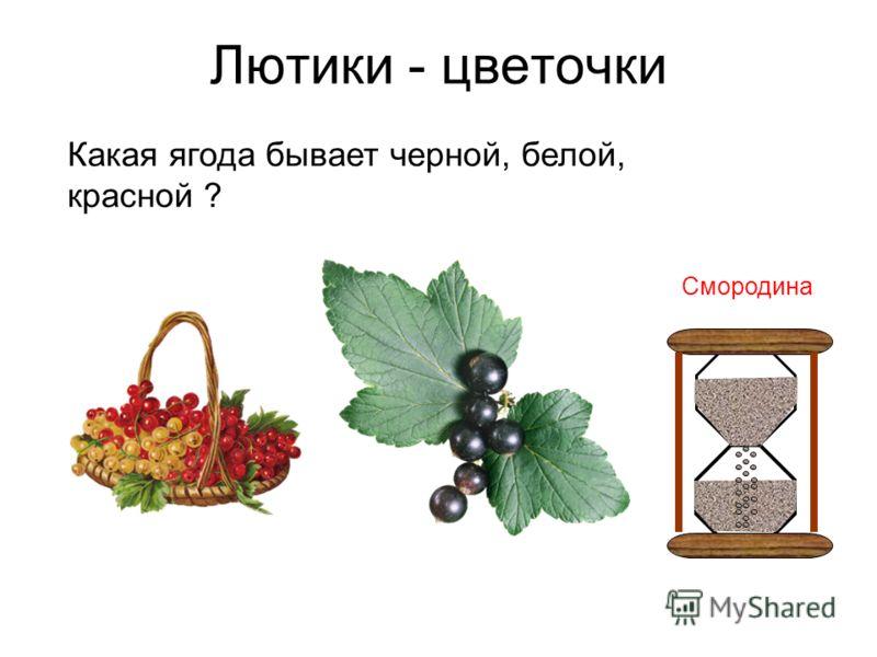 Лютики - цветочки Какая ягода бывает черной, белой, красной ? Смородина