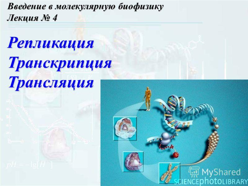 Введение в молекулярную биофизику Лекция 4 РепликацияТранскрипцияТрансляция