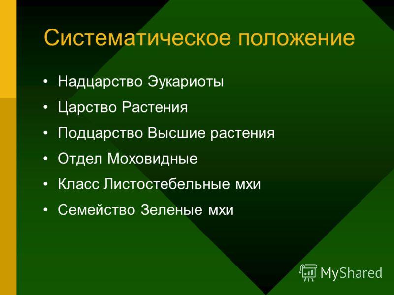 Систематическое положение Надцарство Эукариоты Царство Растения Подцарство Высшие растения Отдел Моховидные Класс Листостебельные мхи Семейство Зеленые мхи